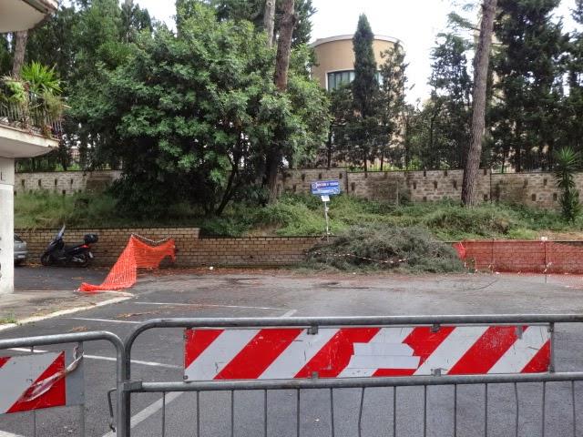 ROMA Cadono gli alberi, cittadini prigionieri a Roma Nord